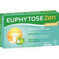 Euphytosezen Comprimés B/30 à Concarneau