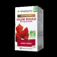 Arkogélules Vigne Rouge Bio Gélules Fl/45 à Concarneau