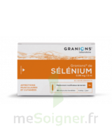 Granions De Selenium 0,96 Mg/2 Ml S Buv 30amp/2ml à Concarneau