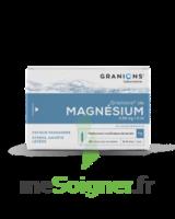 Granions De Magnesium 3,82 Mg/2 Ml S Buv 30amp/2ml à Concarneau
