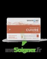 Granions De Cuivre 0,3 Mg/2 Ml S Buv 30amp/2ml à Concarneau