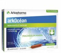 Arkocean Magnesium Marin Solution Buvable Caramel 20 Ampoules/10ml à Concarneau