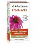 Arkogélules Echinacée Gélules B/45 à Concarneau