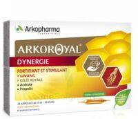 Arkoroyal Dynergie Ginseng Gelée Royale Propolis Solution Buvable 20 Ampoules/10ml à Concarneau