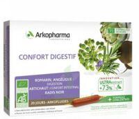 Arkofluide Bio Ultraextract Solution Buvable Confort Digestif 20 Ampoules/10ml à Concarneau