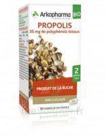 Arkogélules Propolis Bio Gélules Fl/45 à Concarneau