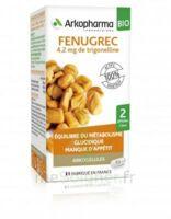 Arkogélules Fenugrec Bio Gélules Fl/40 à Concarneau