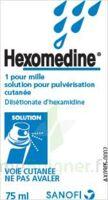 Hexomedine 1 Pour Mille, Solution Pour Pulvérisation Cutanée En Flacon Pressurisé à Concarneau