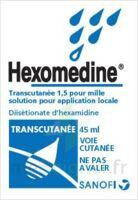 Hexomedine Transcutanee 1,5 Pour Mille, Solution Pour Application Locale à Concarneau