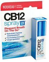 Cb 12 Spray Haleine Fraîche 15ml à Concarneau