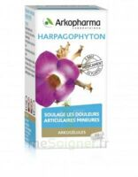Arkogelules Harpagophyton Gélules Fl/45 à Concarneau