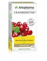 Arkogélules Cranberryne Gélules Fl/45 à Concarneau
