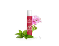 Puressentiel Anti-pique Roller Apaisant Anti-Pique - 5 ml à Concarneau