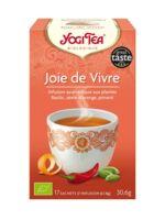Yogi Tea Tisane Ayurvédique Joie De Vivre Bio 17 Sachets/1,8g à Concarneau