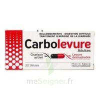 Carbolevure Gélules Adulte Plq/30 à Concarneau