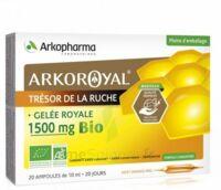 Arkoroyal Gelée Royale Bio 1500 Mg Solution Buvable 20 Ampoules/10ml à Concarneau