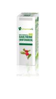 Huile Essentielle Bio Gaulthérie à Concarneau