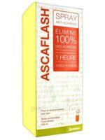 Ascaflash Spray Anti-acariens 500ml à Concarneau