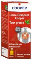 Lierre Grimpant Cooper édulcoré Au Maltitol Liquide Solution Buvable Sans Sucre F/100ml à Concarneau