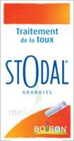 Boiron Stodal Granules Tubes/2 à Concarneau