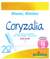 Boiron Coryzalia Solution Buvable Unidose B/20 à Concarneau