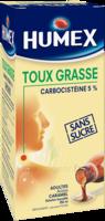 Humex 5 % Solution Buvable Expectorant Sans Sucre Adulte Fl/250ml à Concarneau
