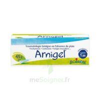 Boiron Arnigel Gel T(alumino-plastique)/45g à Concarneau