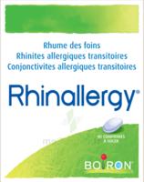 Boiron Rhinallergy Comprimés B/40 à Concarneau