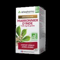Arkogélules Marronnier D'inde Bio Gélules Fl/45 à Concarneau