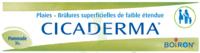 Boiron Cicaderma Pommade à Concarneau