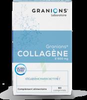 Granions Collagene Cpr B/60 à Concarneau