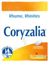 Boiron Coryzalia Comprimés Orodispersibles à Concarneau
